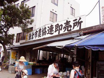 070729kamakura-renbaisho.jpg