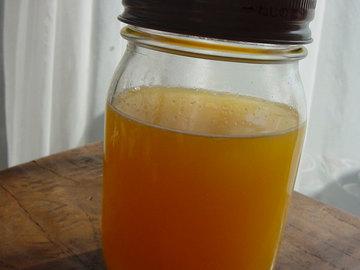 080506citrus-fruits-yeast.jpg