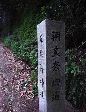 081124asahina-kiridohshi01.jpg