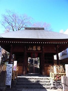 090125gumyoji.jpg