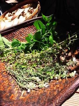 090429dryed-herbs.jpg