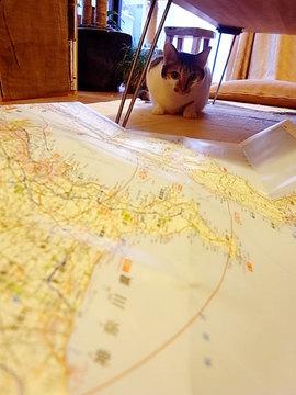 091122shake-map1.jpg
