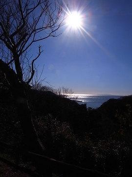 100102hiroyama-park01.jpg