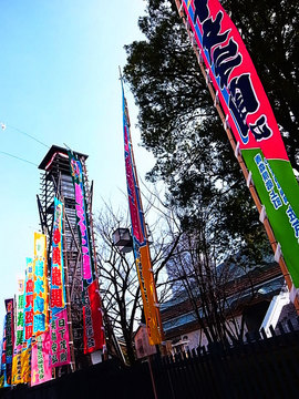 100214ryogoku1.jpg
