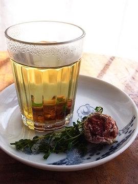 100317umeboshi-thyme-tea.jpg