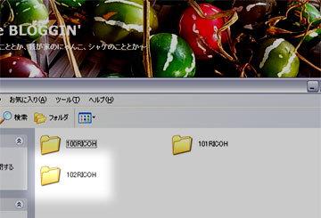 100324dcim2.jpg