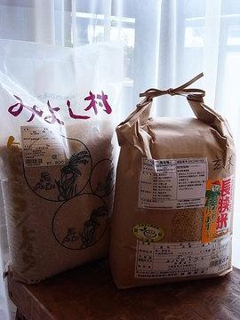 100329brown-rice.jpg