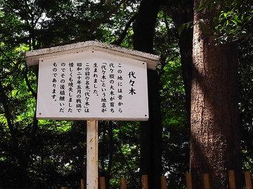 100825meiji-jingu07.jpg