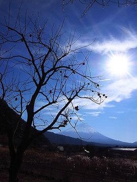 101128yamanashi1.jpg