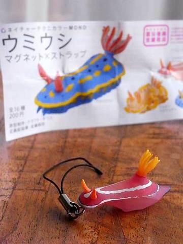 111223sea-slug.jpg