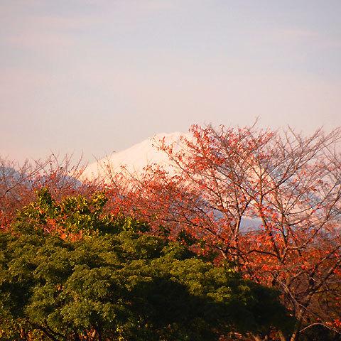 121129mt-fuji.jpg