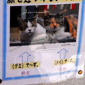 130127yokohama9.jpg