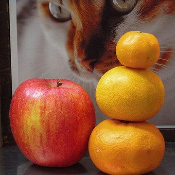 131130fruits.jpg