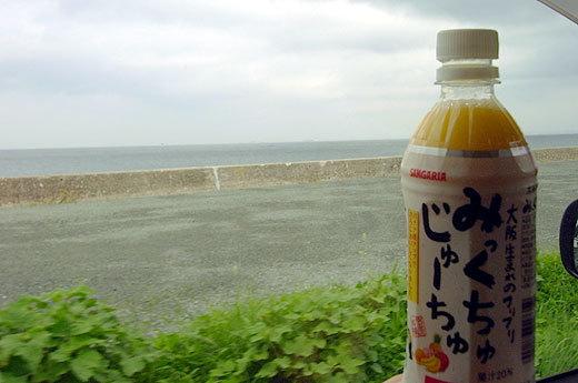 淡路の海とみっくちゅじゅーちゅ