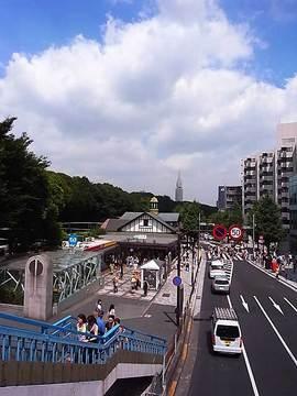 100825meiji-jingu01.jpg