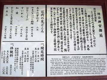 100825meiji-jingu13.jpg