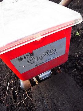 101123miura2.jpg