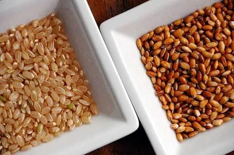110904brown-rice6.jpg
