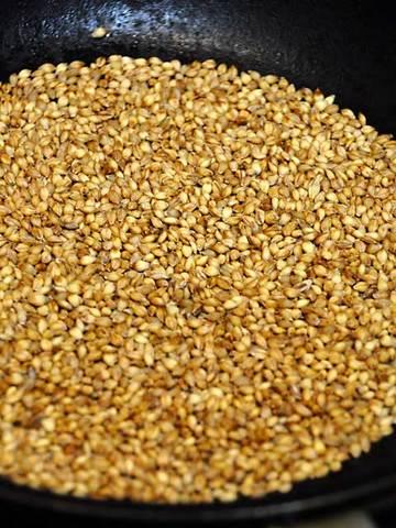 110904hulless-barley1.jpg