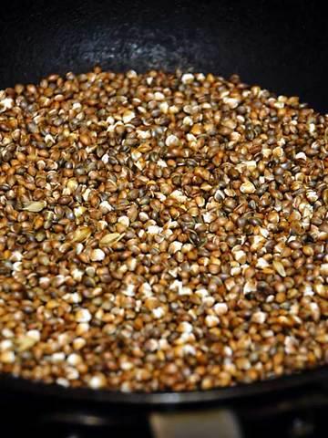 110904hulless-barley4.jpg