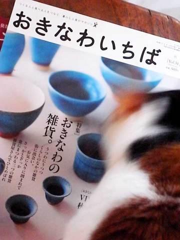 111201magazine2.jpg